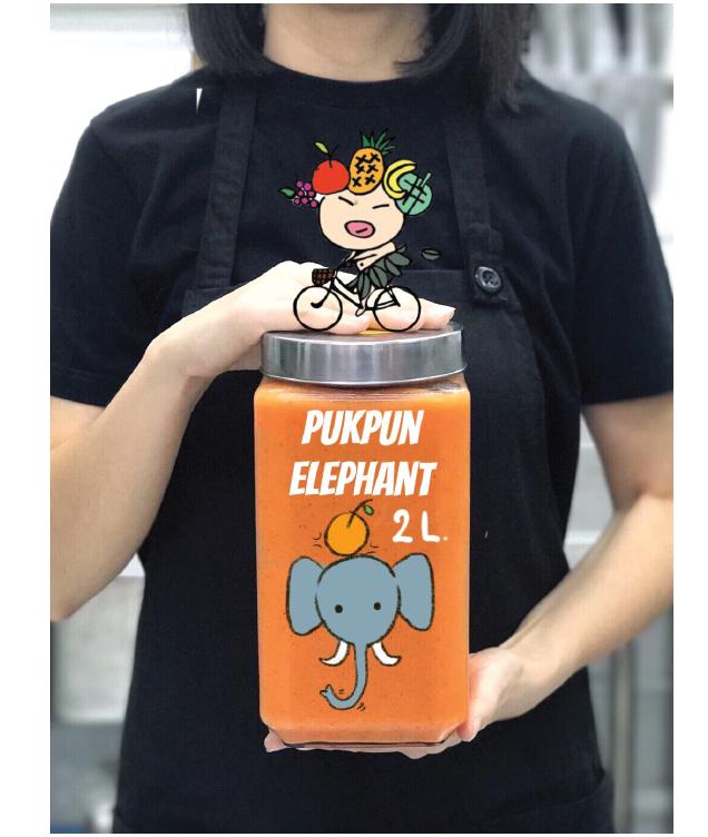 PUKPUN ELEPHANT 2L.