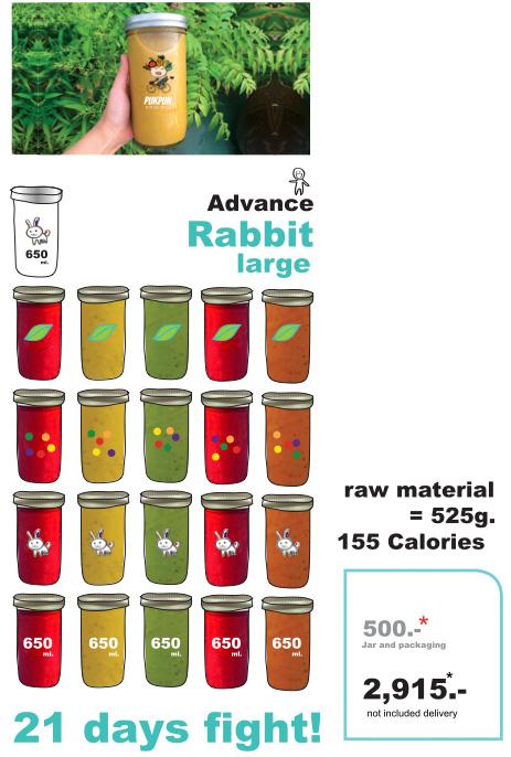 Pukpun Rabbit Large program