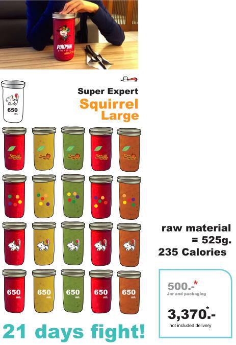 Pukpun Squirrel Large program